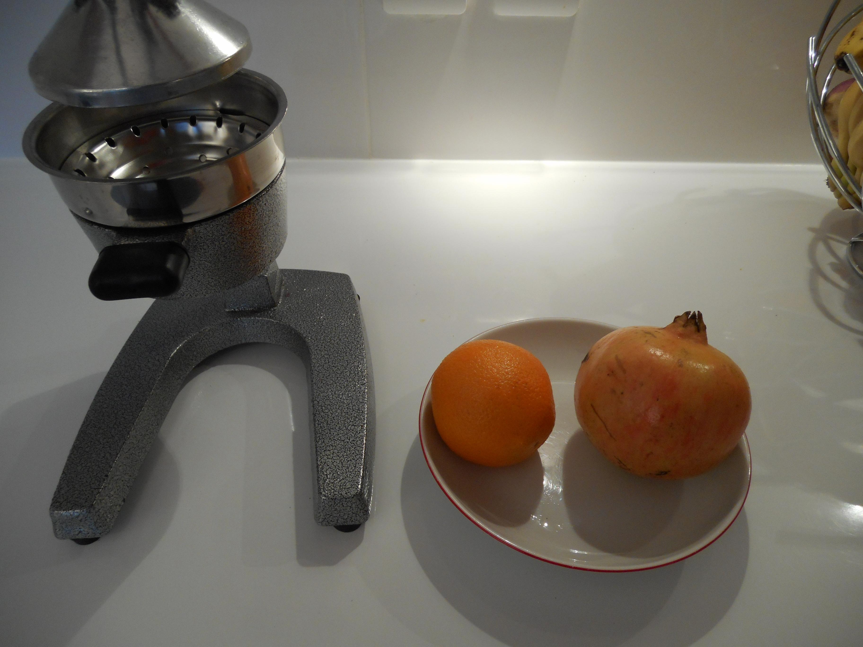 Un presse agrume manuel à levier pour conserver les enzymes