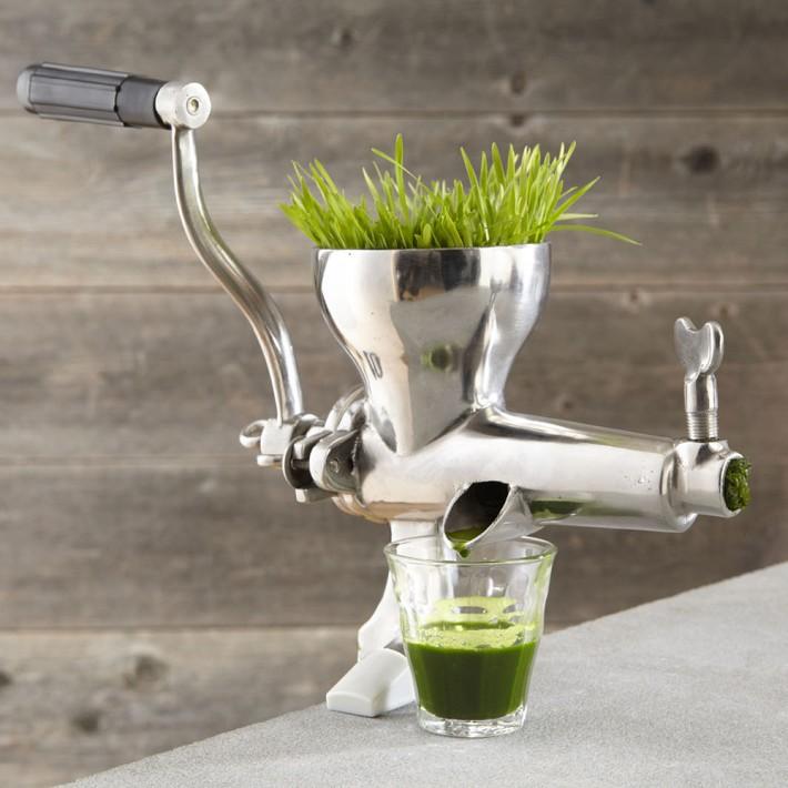 pr parer un jus d 39 herbe de bl sans extracteur de jus. Black Bedroom Furniture Sets. Home Design Ideas
