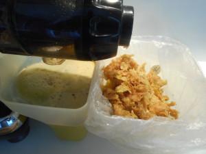pulpe-de-jus-reste-dechets-fibres-résidus-extracteur-de-jus