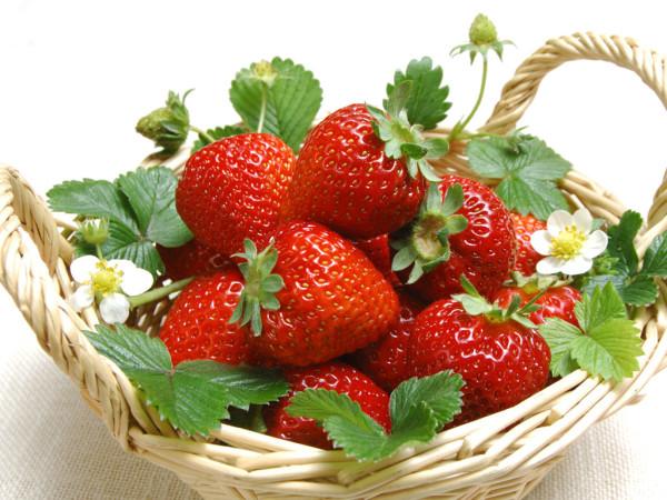 fruit-5